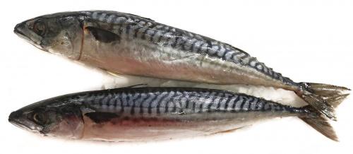 Рыба Скумбрия дефрост., вес/СП